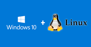 Windows 10 and Linux
