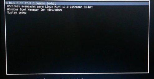grub-boot screen